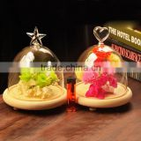 clear glass bell cover dome cover glass crafts customize