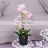 Factory home decoration artificial fabric plant flower wholesale butterfly orchid flower