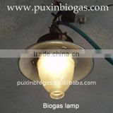 cheap biogas lamp