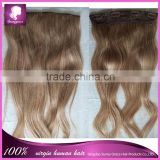 "130g one bundles 10"" width Brazilian human hair clip in hair extension 100% natural 6A straight Brazilian virgin aliexpress hair"