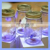 Factory Direct Sell Popular Attractive Butterfly Glass Jars