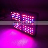 Good selling red and blue full spectrum apollo 4 led grow lights