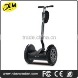 2 whee high quality strong motor 1000W city road l electric standing scooter with handle