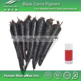 100% Natural Black Carrot Extract,Black Carrot Color,Black Carrot Powder Color