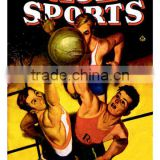 Ace Sports: Basketball 20x30 poster