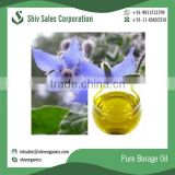 Hot Seller of Best Quality Pure Borage Oil at Low Reliable Price