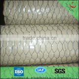 Anping Galvanized or PVC coated hexagonal chicken wire mesh from professional manufacturer