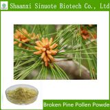 Factory Supply High Quality Pine Pollen Powder