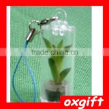 Oxgift Baby plants / plant pendant / mini plant pendant / Portable farm baby tree mini plant