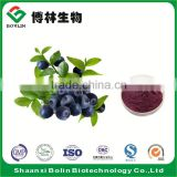 Factory Supply Fresh Acai Berry Fruit Powder Frozen Brazil Acai Berry Puree Powder