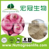 Dehydrated Onion Powder/Granular/Flakes/Slice White/Yellow