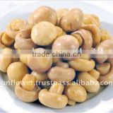 Good Quality Blended Canned Mushroom Champignon