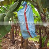 polypropylene spunbond non woven fabric bunch covering in banana
