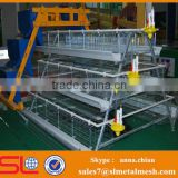 Chicken farm building chicken farm equipment / chicken egg poultry farm