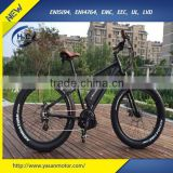 2016 500W/750W Mid Drive Electric Assisted Bicycle for men, suit for Mountain/Snow/ Beach