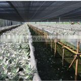 fabric agriculture sun shade protection net