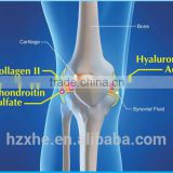 medical Sodium Hyaluronate Injection (Orthopedic), hyaluronic acid gel knee joint injection