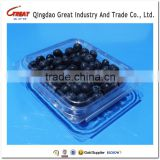 Hot Sale Berry Plastic Packaging Fruit Container