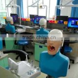 adjustable Manikin, Dental Manikin, dental model with water drainage system