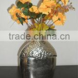 Flower Vase for Home Decoration
