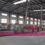 Potato chips ,Frozen french fries production line