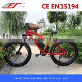 FJ-TDE07, Selfdesign hummer electric bikes for sale 500 watts
