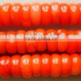 Sea bamboo red coral beads,beading supply,beading components,beading jewelry,beading necklace
