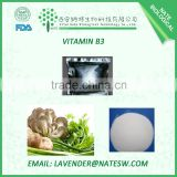 wholesale vitamins,nicotinamide,niacin,vitamin b3 food ingredient CAS No.: 98-92-0