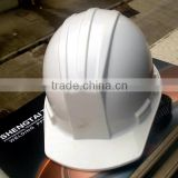 CE Certificate HDPE Or ABS Material Construction dog safety helmet
