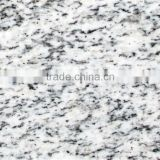 Light Color Good Quality Granite Model
