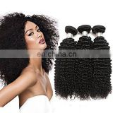 2017 hot sale kinky curly brazilian hair original brazilian human hair