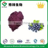 Wholesale Bulk Acai Berry Puree Powder Fresh Freeze Dried Acai Powder