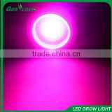Wholesale cheap cob led grow light par38 12w cob led grow light extreme flower led grow lights