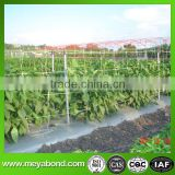 hdpe crop hanging support net for cucumber and bitter melon vegetables