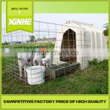 Short-time producer House and open-air cage for calfs / Greenhouse Poultry Equipment Calf Hutch