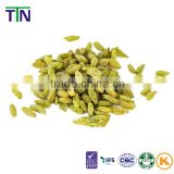 TTN wholesale dried seeded green raisin from Xingjiang CHINA