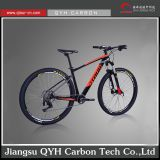 Jiangsu QYH Carbon Tech carbon mountain bike 29er disc brake carbon fiber mtb carbon bike 29