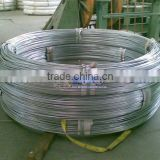 galvanized wire/binding wire/electro &hot dip galvanized steel wire/ 8gauge to 26gauge(Factory)