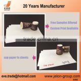 Free sample PE coated board in sheet