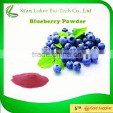 Factory Price Freeze Dried Blueberry Fruit Powder /freeze dried blueberry