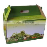 colored quail pulp egg cartons packaging