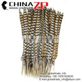 No.1 Manufactor ZPDECOR Best Selling Cheap Long Natural 60-70cm Length Reeves Venery Pheasant Tail Feathers