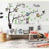 Popular Family Photo Trees Wall Sticker for Home Decoration