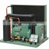 High efficiency suitable price cold room bitzer air cooled micro channel condensing unit