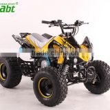 110cc/125cc atv quad bike with 8 inches tire go kart utv 4 wheel motorcycle