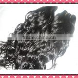 AAAAA curly Brazilian virgin hair Factory Price Hot Selling Wholesale Human Hair Extension