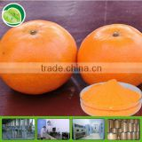 100% purity tang orange juice powder