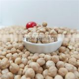 best quality chickpea market price HPS white chick pea beans