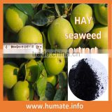 100% solubility algae fertilizer/humic acid from leonardite/npk fertilizer prices named chemical fertilizers in agriculture
