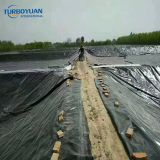 Black Polyethylene plastic roll water reservoir Pond Liner for salt project